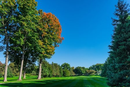 Fall Golf Membership Special Play the Rest of 2016 for FREE